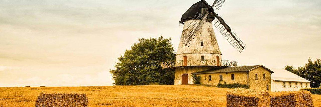 AGRO PROFF специализируется на разработке и внедрении инженерных решений в 4-х основных направлениях: — комплексы первичной обработки зерна — вторичная обработка зерна — реконструкция существующих комплексов — различные типы весов